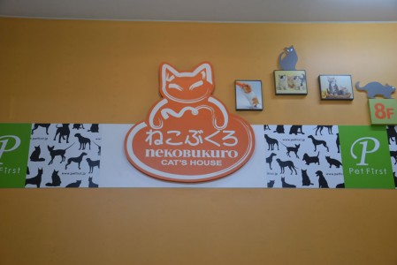 Nekobukuro cat cafe