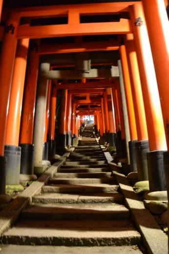 Can't get enough of the torii gates at Fushimi Inari-Taisha