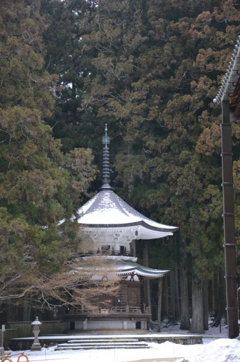 Hidden temples in Koya town