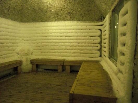 The freezer-room...