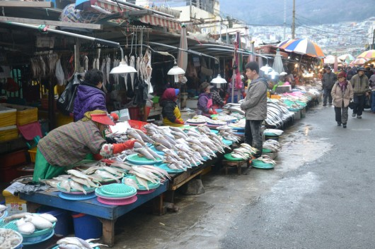Fresh fish at the Jagalshi fishmarket!