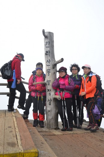 Korean elderly power hikers dressed in bright colors