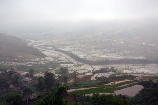 Amazing valley of rice paddies in Sapa