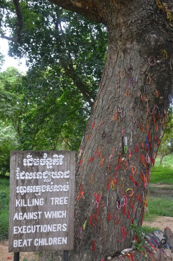 Tree in the killing fields where they killed the children and babies...