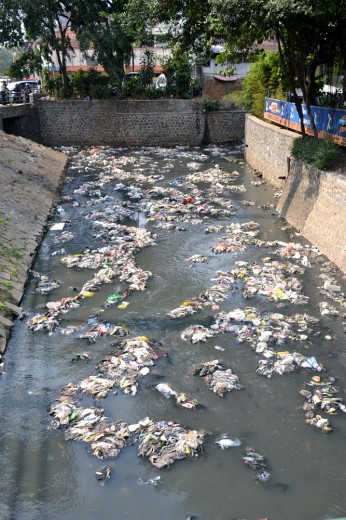 "HORRIBLE trash disposal ""system"""