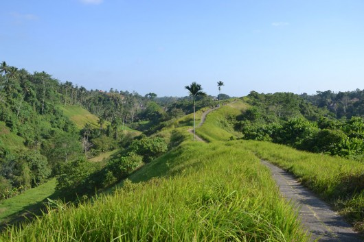 Walk through the villages and rice fields