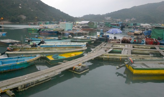Fisherman boats at the other pier of Lamma Island