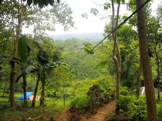 Zipline experience during our hike near Nuts Huts