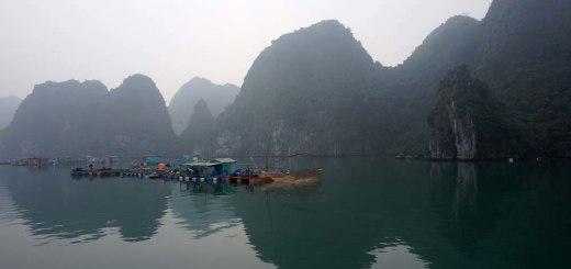 Halong Bay's limestones