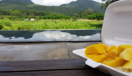 Mango sticky rice at the pool with a view!