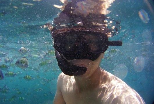 Asian Backpacker - Snorkeling on Koh Phi Phi